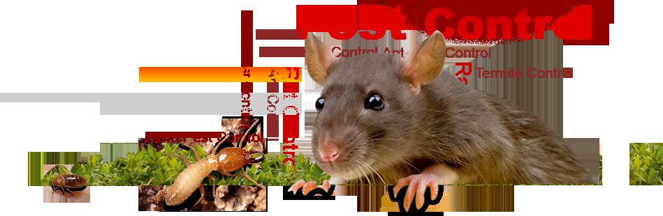 pestcontrol_banner